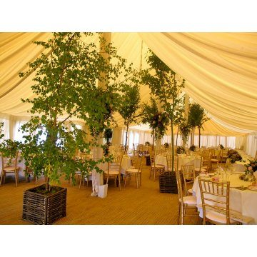 Chiavari chairs being used for a wedding