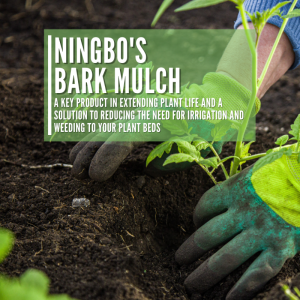 Using Bark Mulch In The Garden For Plant